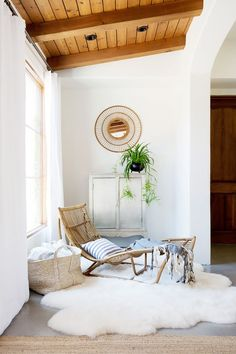 """These online plant delivery services will transform your space into a """"jungalow."""""""