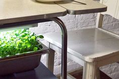 Amazing Kitchen Table Apartment Sized Furniture Interior Decor - Decorstate