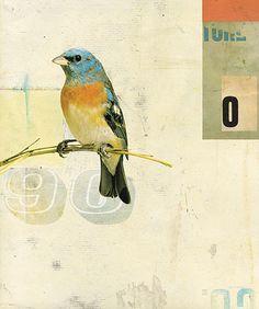 Bird No.1, 2008 by Kareem Rizk, via Flickr