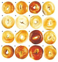 Bay Area bagels, in no particular order: 1. Authentic Bagel Co.; 2. Bagelry; 3. Baron Baking; 4. Bay Area Bagel; 5. Katz Bagel; 6. Boogie Woogie Bagel Boy; 7. Holey Bagel; 8. Berkeley Bagel; 9. House of Bagels, SF; 10. House of Bagels, San Carlos; 11. Izzy's Brooklyn Bagels; 12. Manhattan Bagel; 13. Schmendricks; 14. Noe Bagel; 15. Posh Bagel; 16. Noah's Bagels. Photo: Craig Lee, Special To The Chronicle / SF
