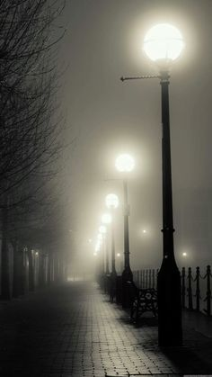 Misc iPhone 6 Plus Wallpapers - Foggy Street Lights iPhone 6 Plus HD Wallpaper