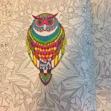 Resultado de imagem para floresta encantada para colorir