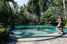 Amazing Deluxe Room with Garden Views - Mansões para Alugar em Ubud