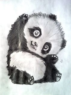 Baby panda sketches can be cute too