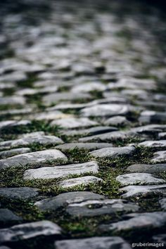 Paris - Roubaix Think I'd like to NOT cycle over these. My bike would shake itself to pieces :(