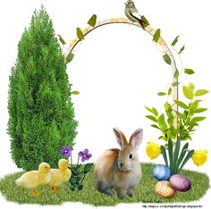 Dagnys-Cluster and Tags: Clusterframe Easter