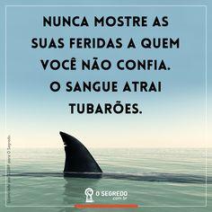 Nunca mostre as suas fedidas a quem você não confia. O sangue atrai tubarões.