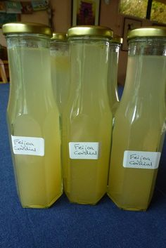 Feijoa Cordial Recipe - Life's Bounty Fruity Cocktails, Fun Drinks, Beverages, Lime Cordial Recipes, Tartaric Acid, Juice 3, Lemon Lime, Chutney, Food Processor Recipes