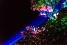 Genius Loci Weimar 2015 // Laser Installation von Udo Nauber // © Henry Sowinski