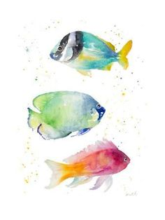 Tropical Fish II Art Print by Lanie Loreth at Art.com