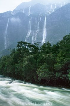 Rain-swollen river, Milford Sound, Fiordland National Park, New Zealand