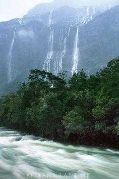 Rain-swollen river, Milford Sound, Fiordland National Park, New Zealand
