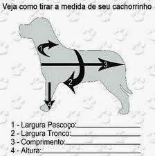 Como tirar as medidas da roupinha de cachorro