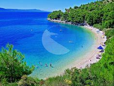 DRVENIK - Uvala Duba Riviera Beach, Croatia, Beaches, Pine, Golf Courses, Pine Tree