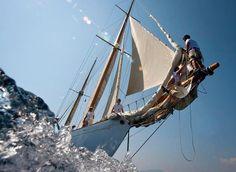 sailing  - sailboat