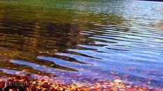 奥日光 湯の湖の紅葉[15249000265]の映像素材・動画素材。アマナイメージズでは、人物や風景、空撮など、フルHDの高品質で美しい映像素材を12万点以上販売。CMやテレビ番組などの映像制作のほか、WEBでの使用も可能です。