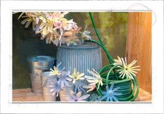Window Display Concepts : Eco-Friendly Anthropologie