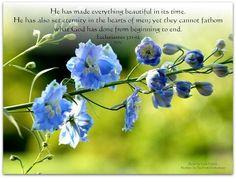 Ecclesiastes 3:11-12