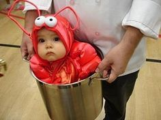 Baby Lobster!