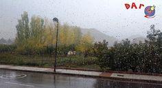 Buenos y lluviosos días! Recordad que esta tarde también abrimos de 16:00/20:30.Aqui os esperamos aunque llueva, truene o relampaguee.
