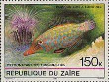 1980 Tropical Fish