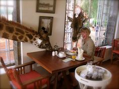 breakfast with giraffes nbd