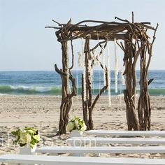 Raw+Wood+Beach+Chuppah