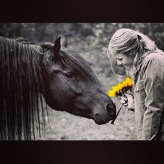 Sweet horse and girl w yellow flowers