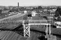 Panorama from New Lynn station signal mast. Nz History, Precast Concrete, Air Raid, Brick Building, Public Art, Auckland, Image Collection, New Zealand, The Neighbourhood