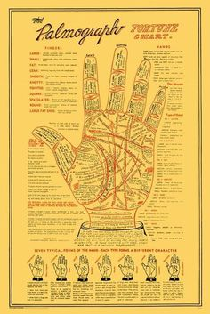 Numerology Spirituality - Palmistry Get your personalized numerology reading Pseudo Science, Under Your Spell, Vintage Poster, Fortune Telling, Book Of Shadows, Numerology, Knowledge, Healing, Words