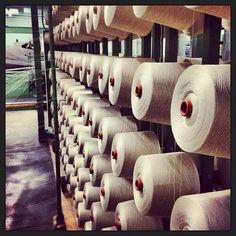 Making an Egyptian Giza cotton mercerized warp! Giza, Egyptian, Beds, Weaving, Cotton, Fashion, Moda, Fashion Styles, Bedding