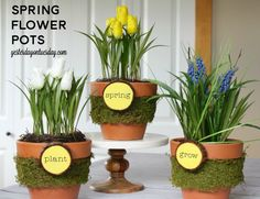 Add some pizzaz to your Flower Pots in a few simple steps. Lovely spring decor or hostess gift for Easter.