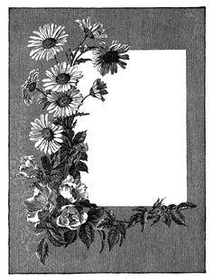 frame_summer_botanical-2png.png (1217×1600)
