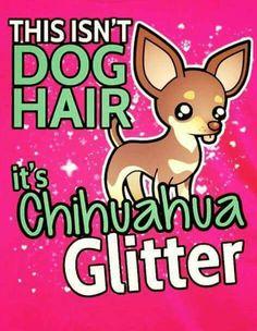 Chihuahua glitter