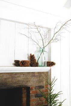 A naturalistic approach to holiday décor from Moon Canyon that you can emulate in your own home this season.