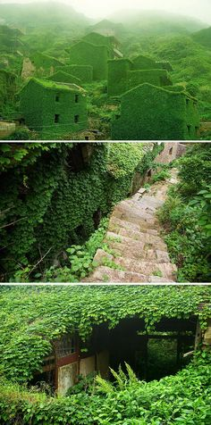 Abandoned Chinese fishing village shrouded in green