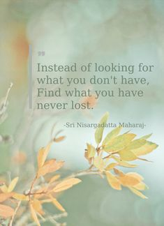 Instead of looking for what you don't have, find what you have never lost. (Sri…