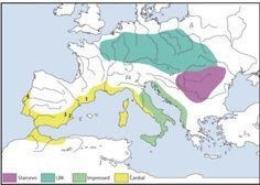 Cardial Ware Early Neolithic Expansion, Olalde et al