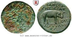 RITTER Seleukis und Pieria, Apameia, Zeus, Elefant #coins