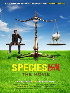 Speciesism the Movie - This is a wonderfully thought-provoking film that takes an intellectual approach to the subject of our treatment of animals, specifically those raised for food. Really worth watching & sharing with all those you know. Fitness Workouts, Vegan Documentaries, Lifestyle Fotografie, Why Vegan, Vegan Vegetarian, Wallpaper Free, Animal Agriculture, Vegan Quotes, Movies
