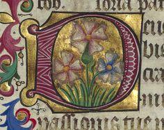 Missale ad usum ecclesiae Aquensis. Date d'édition : 1466 Type : manuscrit Langue : Latin