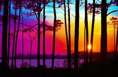 Colorful Sunrise