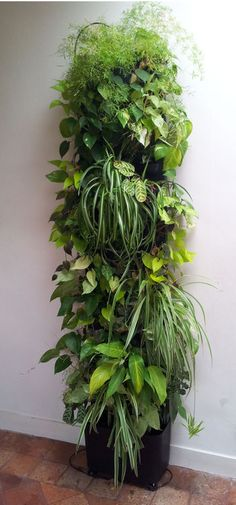 Mur végétal Flowall TOTEM noir végétalisé
