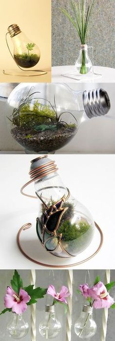/ VASES :: Light Bulb Terrarium & Bud Vases Inspiration :: Looks pretty easy.just create a stand with some wire & there's tons of tute's out there teaching you how to clean out a light bulb. Terrarium Diy, Light Bulb Terrarium, Light Bulb Art, Light Bulb Crafts, Modern Vintage Homes, Vintage Home Decor, Recycled Light Bulbs, Vase With Lights, Décor Antique