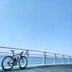 【temps_japan】さんのInstagramをピンしています。 《最近ライトをVOLT800に買い換えようかと悩み中です。VOLT800を使用してる方、使用した事のある方、感想をお聞かせ下さい。写真は過去Picです。  #ロードバイク#ロード#ライド#サイクリング#自転車#自転車のある風景#青空#空#青#海#青空が好き#タイム#ボーラウルトラ#roadbike#road#ride#cycling#bike#sky#sea#blue#bluesky#time#boraultra》