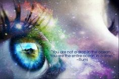 Rumi - you are not a drop in the ocean you are the entire ocean in a drop