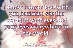 I know I am in love with you because I see the world in your eyes and your eyes everywhere in the world. #purelovequotes