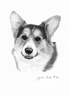 Items similar to 11 x 14 Tri Color Pembroke Welsh Corgi Art Print from Original Pencil Drawing by Jennie Truitt on Etsy - Hannah Dogs Animal Drawings, Cool Drawings, Pencil Drawings, Pencil Sketching, Drawing Animals, Realistic Drawings, Drawing Faces, Corgi Drawing, Welsh Corgi Pembroke