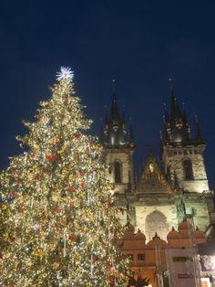Gothic Tyn Church, Christmas Tree at  Prague