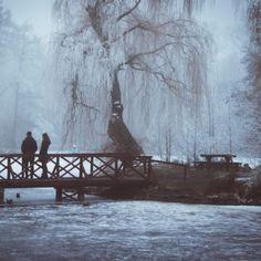 10 különleges faház Magyarországon – Erdei szálláshelyek, wellness faházak a természet ölelésében - Szallas.hu Blog Snow, Travel, Painting, Outdoor, Outdoors, Viajes, Painting Art, Paintings, Trips
